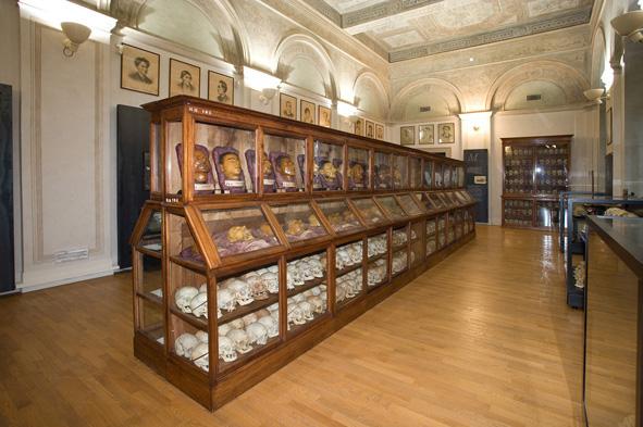 salone_museo